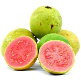 بذر گواوا تو سرخ درشت یا گواوا تو قرمز  Psidium guajava seeds