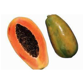 بذر پاپایا رد لیدی | papaya red lady tree seed