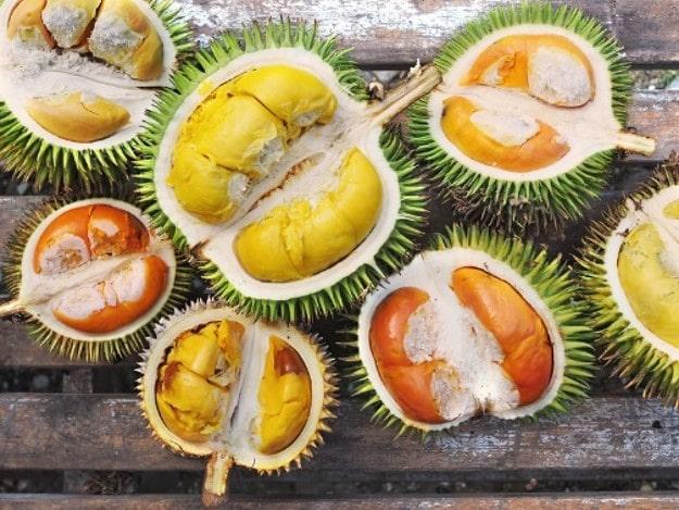 دوریان Durian